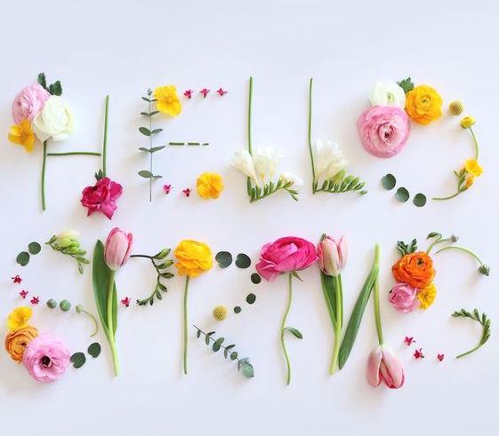 aliments santé du printemps